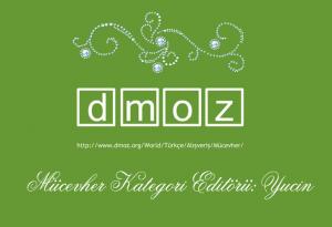 dmoz-300x205